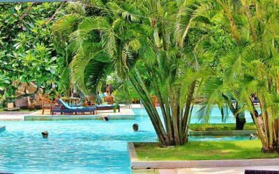 Flights to Bali from $177 return. All direct flights under $430 return; all departure cities under $520 return!