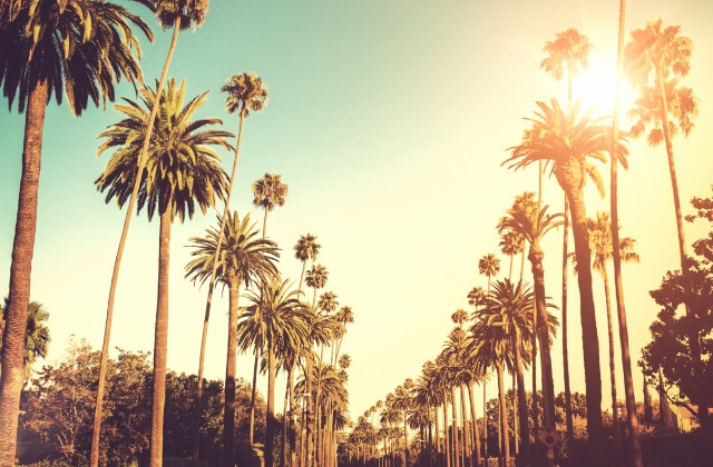 Flights to Los Angeles from $888 return on Qantas. All departure cities under $1020 return!