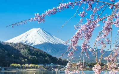 Full-service flights to Tokyo from $517 return. All departure cities under $540 return!