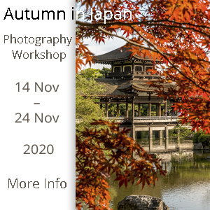 Autumn in Japan Photography Workshop